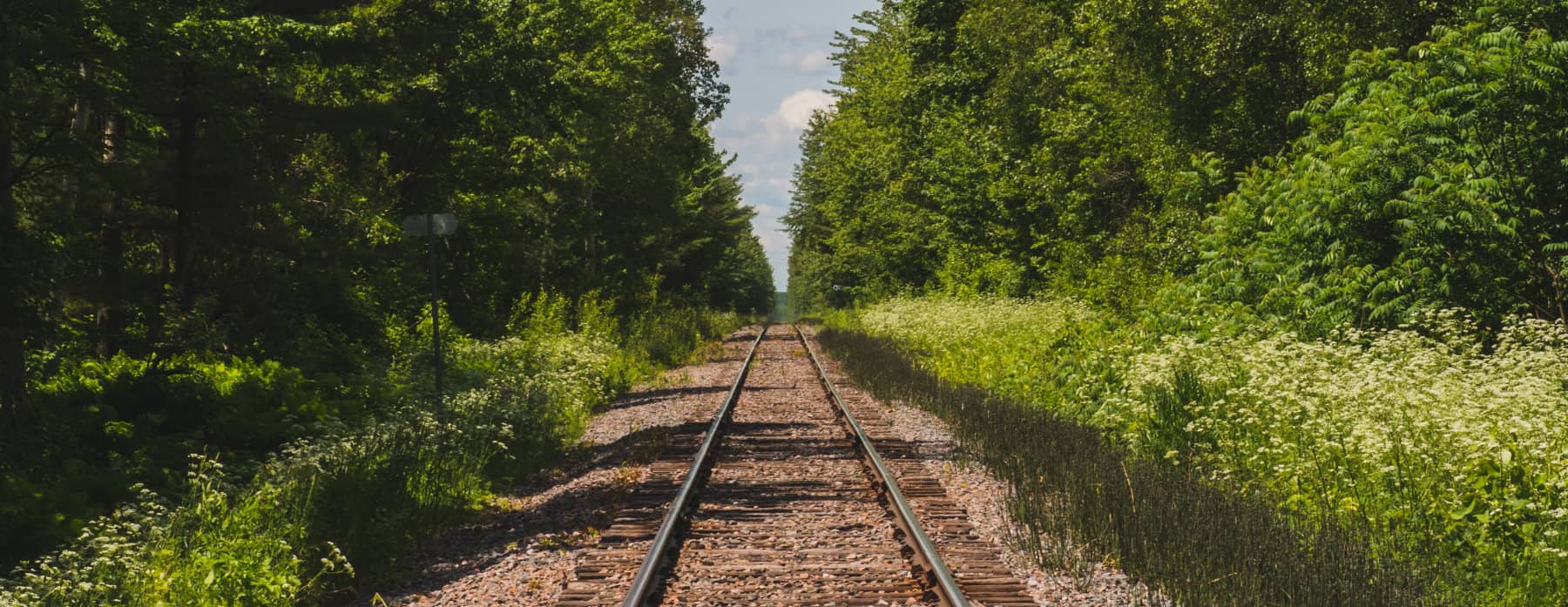 Train Tracks in Country